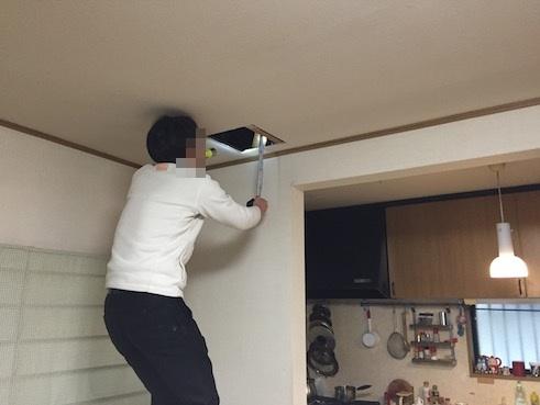 天井を破壊検査