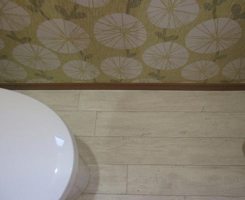 トイレの床・壁